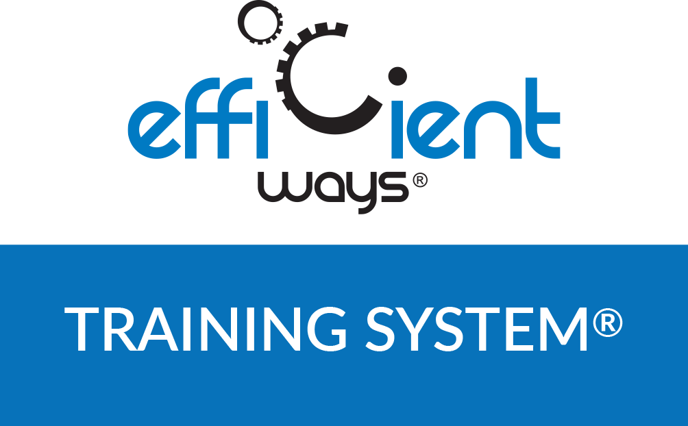 logo training system R